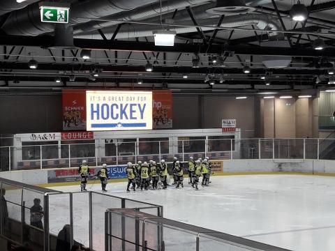 Хоккей в Штутгарте